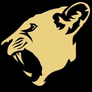 Pantherkopf wildes Tierprofil