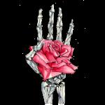 Mortality Rose