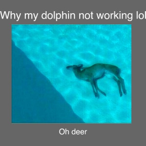 Why my dolphin not working lol