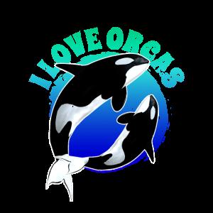 Orca Schwertwal