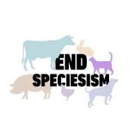 Vegan Shirt End Speciesism