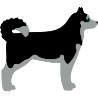 sibiran_husky vektor