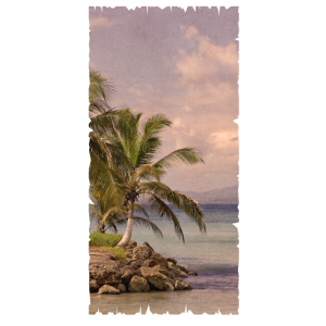 Vintage - Beach