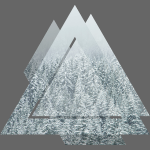 Triangle Snow Forrest