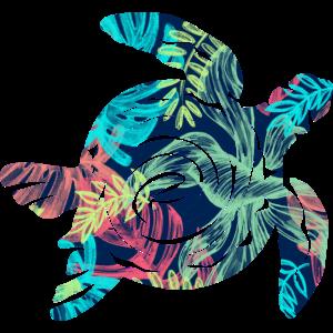Schildkröte Turtle Meer Sommer Blätter Strand Idee