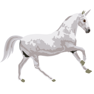 Unicorn Einhorn Fabelwesen Fabeltier Geschenkidee