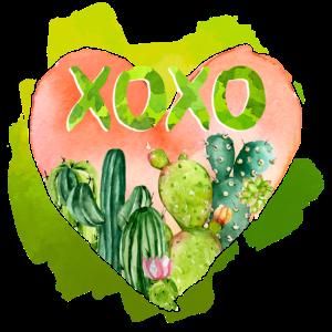 Xoxo-Kaktus