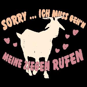 Meine Ziegen rufen