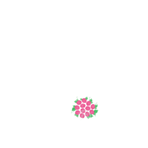 Bride and Groom Diamand Ring