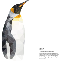 fig8_koenigspinguin