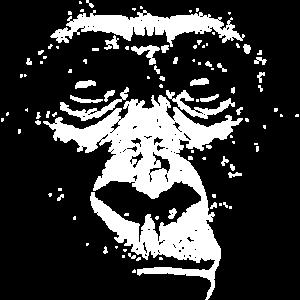 Gorilla Face Gorilla Kopf Gesicht