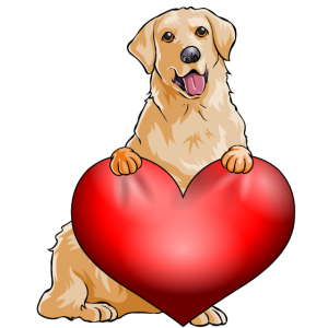 Valentines Goldener Retreiver