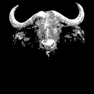Wasserbüffel Bison Büffel Wisent Auerochse Rinder