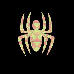 Psychedelische mehrfarbige Spinne