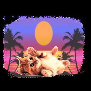 Baby Katze Palmen Sonne