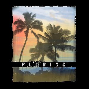 Florida-Palme-Sonnenuntergang-Andenken