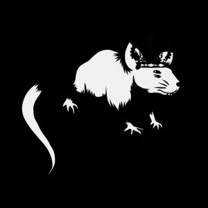Rattenkönig Nagetier