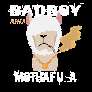 Badboy Alpaca