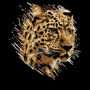 Leopard Gepard Katze Raubkatze Safari Too Mieze