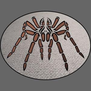 Eine Tribal Tarantel auf der Auslegware
