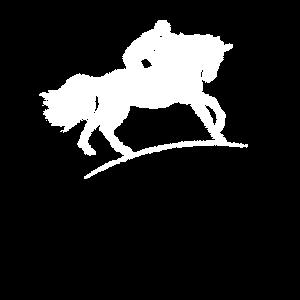Pferde Pferd Reiten