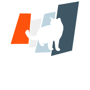 Mieze Katzen