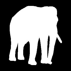 Elefanten Schatten Elefant