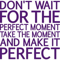 Don't wait for the perfect Moment, eushirt.com