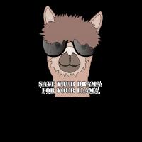 Lama mit Sonnenbrille