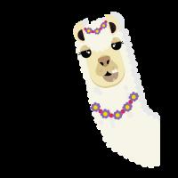 Llama Kopf