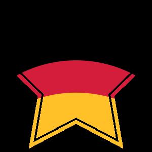Deutschland Stern Weltmeister Fußball Fahne Flagge