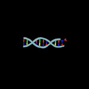 Plasmid DNA Nerd Biologie Cas9 CRISPR