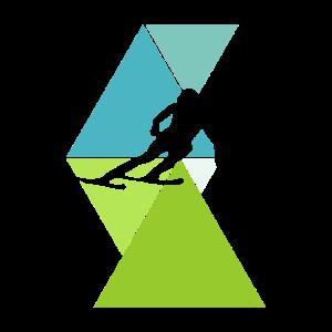 Skifahren Abfahrt Skifahrer