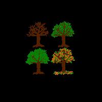 JAHRESZEIT Bäume