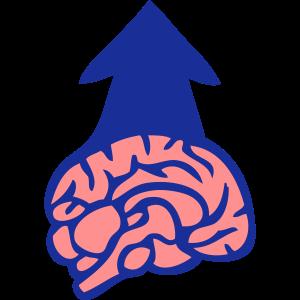 Gehirn Gehirn
