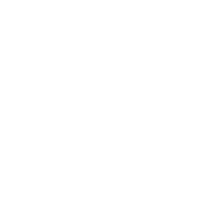 Bonsai Baum Japan Enso Kreis
