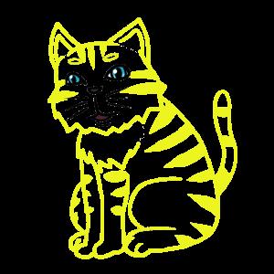 Katze Haustiere Kitten Katzen