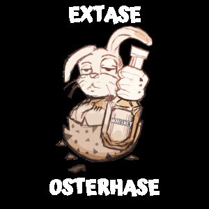 Osterhase Geschenk zu Ostern lustige Sprüche