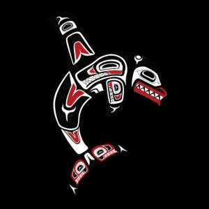Orca Schwertwal Indianer Haida Kunst