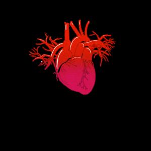 Medizin Herz