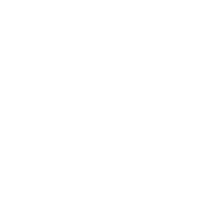 fridays for fake-news, weiss