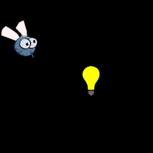 Motte in das Licht