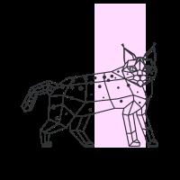 Luchs Polygonal