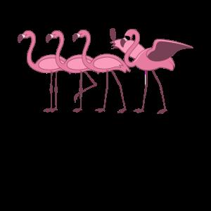 Wein Flamingo Mit Prosecco Weintrinker Geschenk