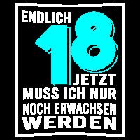 18. Geburtstag 2001 Geburtstagsgeschenk Volljährig