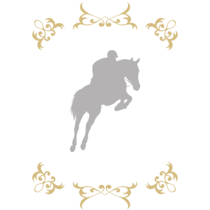 Pferd Pony Reiter perfektes Team