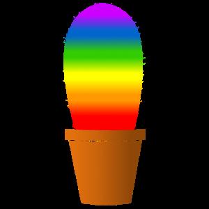 Regenbogen Kaktus