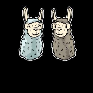 Alpaka Afrika Tier Geschenk Wolle