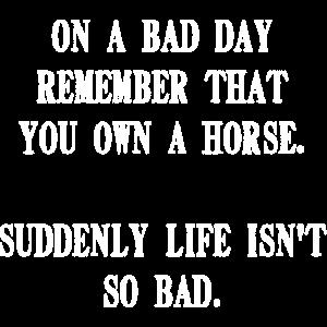 pferdenarr