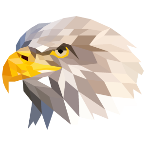 Adler Polygon Eagle